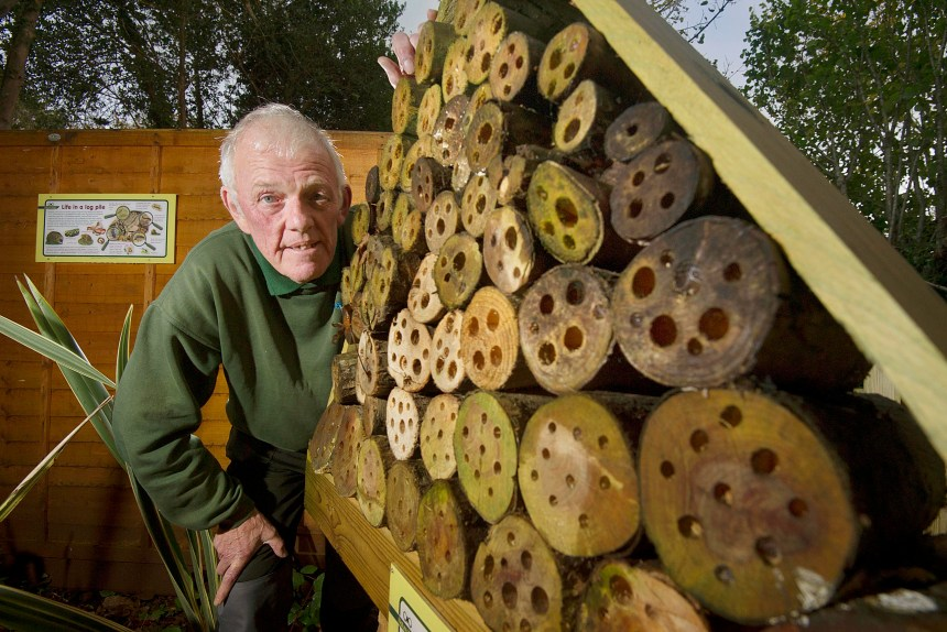 Parkdean Holidays assistant general manager at Looe Bay Holiday Park David Marks with the park's bee hotel