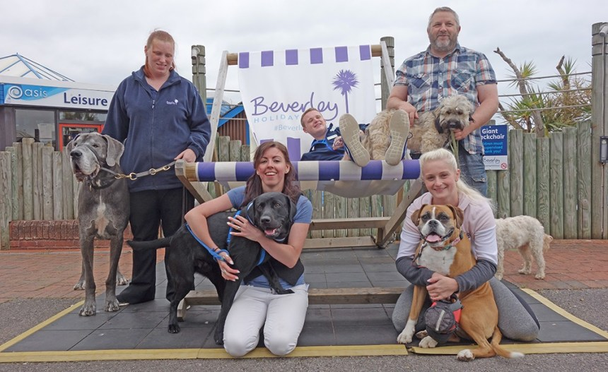 Pooches were put on a pedestal at Beverley Holidays during June's national Bring Your Dog To Work Day