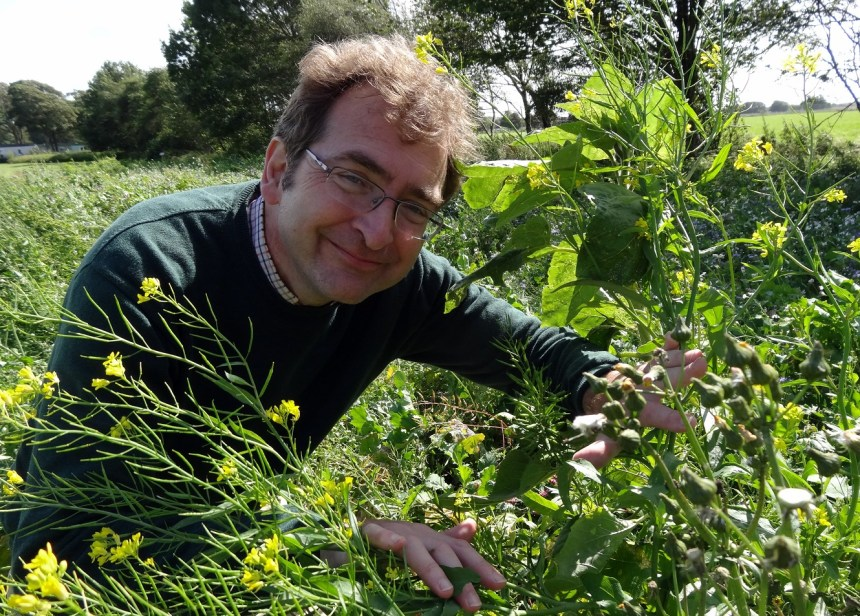 Rufus Bellamy explores Moss Wood's wildflower meadow which attracts many honey bees and butterflies