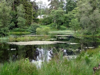 Skelwith Fold's mystical tarn is one of its many natural attractions