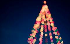 image of christmas tree lights