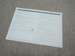 henpincard1.JPG