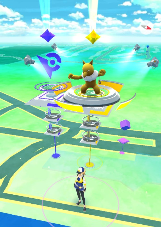 museum gyms