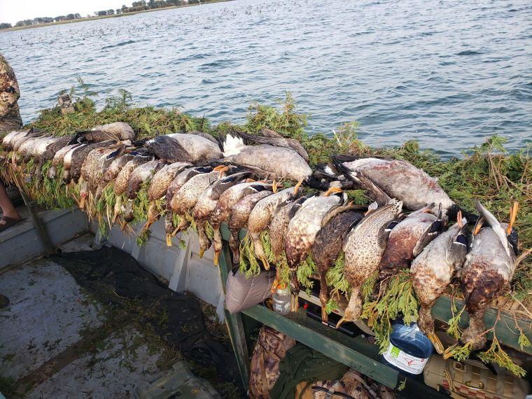 122847548 695368107757246 2572046421546828053 n 2 St. Clair Duck Hunts