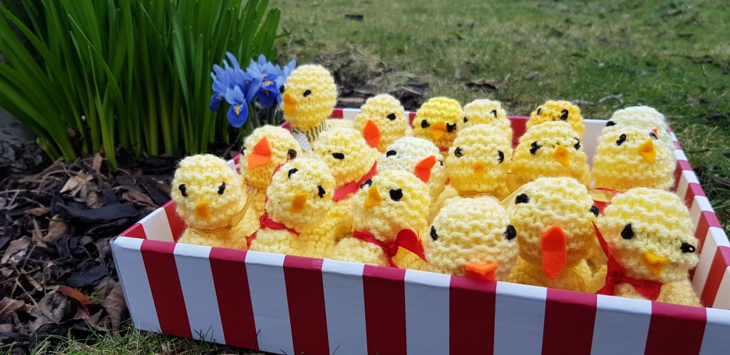 Box of knitted chicks
