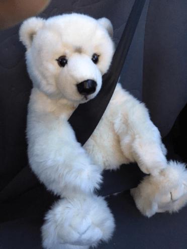 Paul in the car