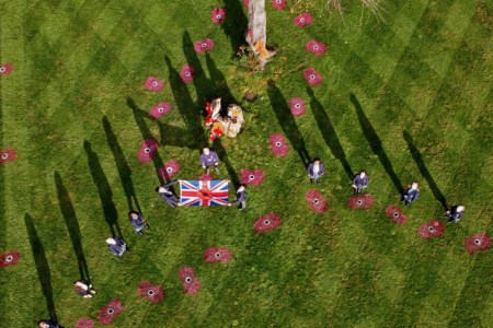 An overhead picture of the poppies on the school field