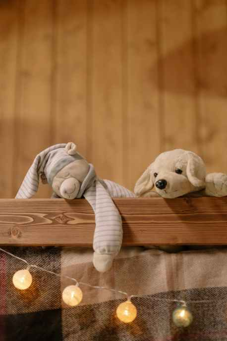 two plush toys on wooden surface