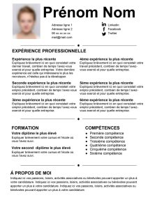 cv, modèle, template, lettre de motivation, curiculum, vitae,