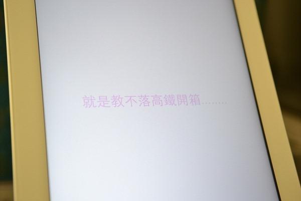 DSC_8617