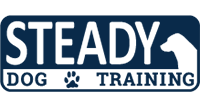 Steady Dog Training