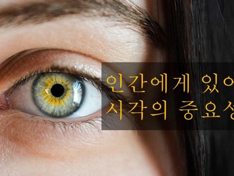 eyeimport