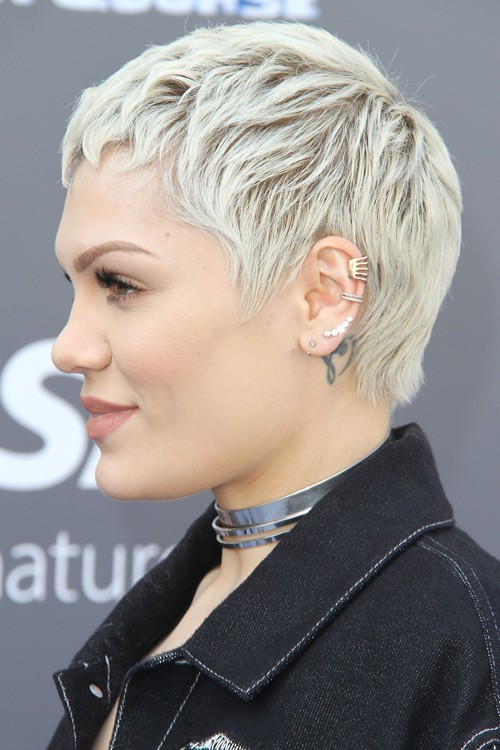 Jessie J Straight Silver Pixie Cut Hairstyle Steal Her Style