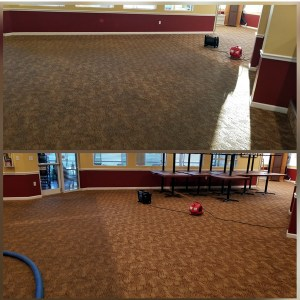 Steam Masters steam carpet cleaning in SW florida