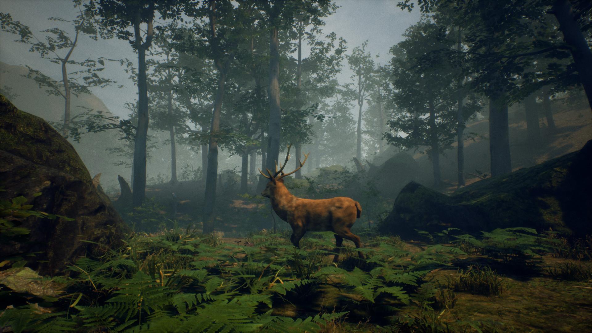 Folklore Hunter Folklorehunter Update 0 1c Bugfixes Story