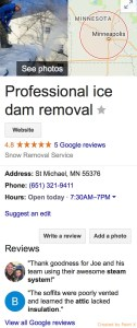 professional Ice Dam removal Reviews