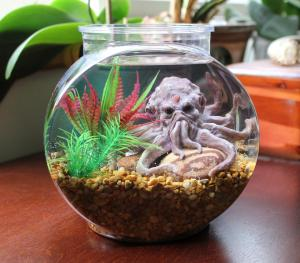 The Cthulhu Octopus Pet Aquarium. 1