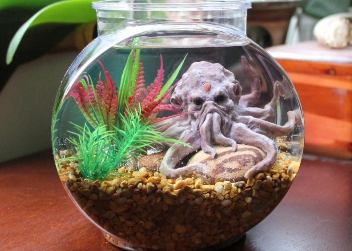The Cthulhu Octopus Pet Aquarium. 1