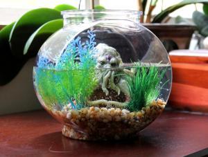 The Cthulhu Octopus Pet Aquarium. 3