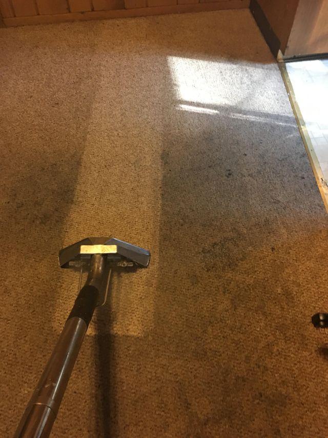 Truckmount Steam Carpet Cleaning