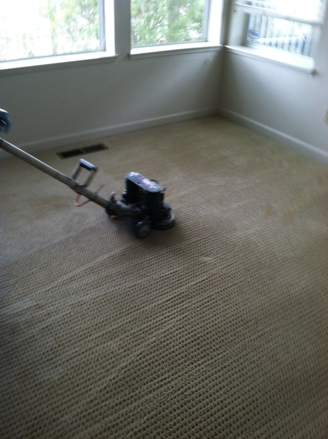 best carpet roto vac steam cleaning