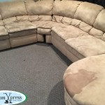 best upholstery cleaners reno
