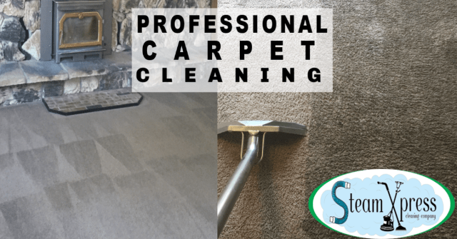best professional carpet cleaning