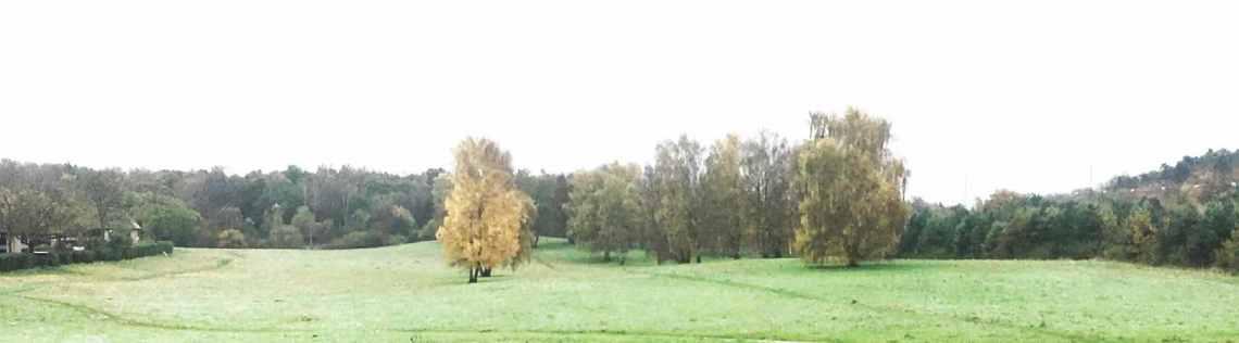nærumvænge_torv_banner