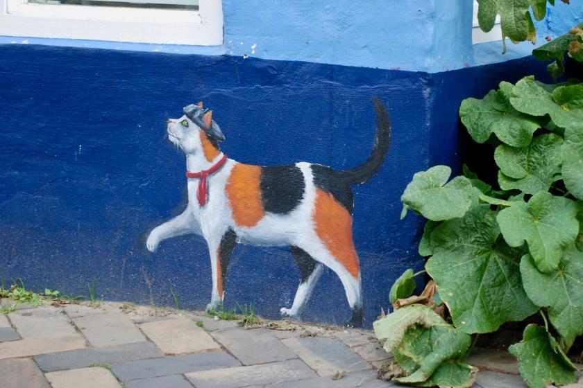 Flensburg på kattejagt i Norderstrasse