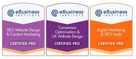 Ebusiness Institute Advanced SEO Certification