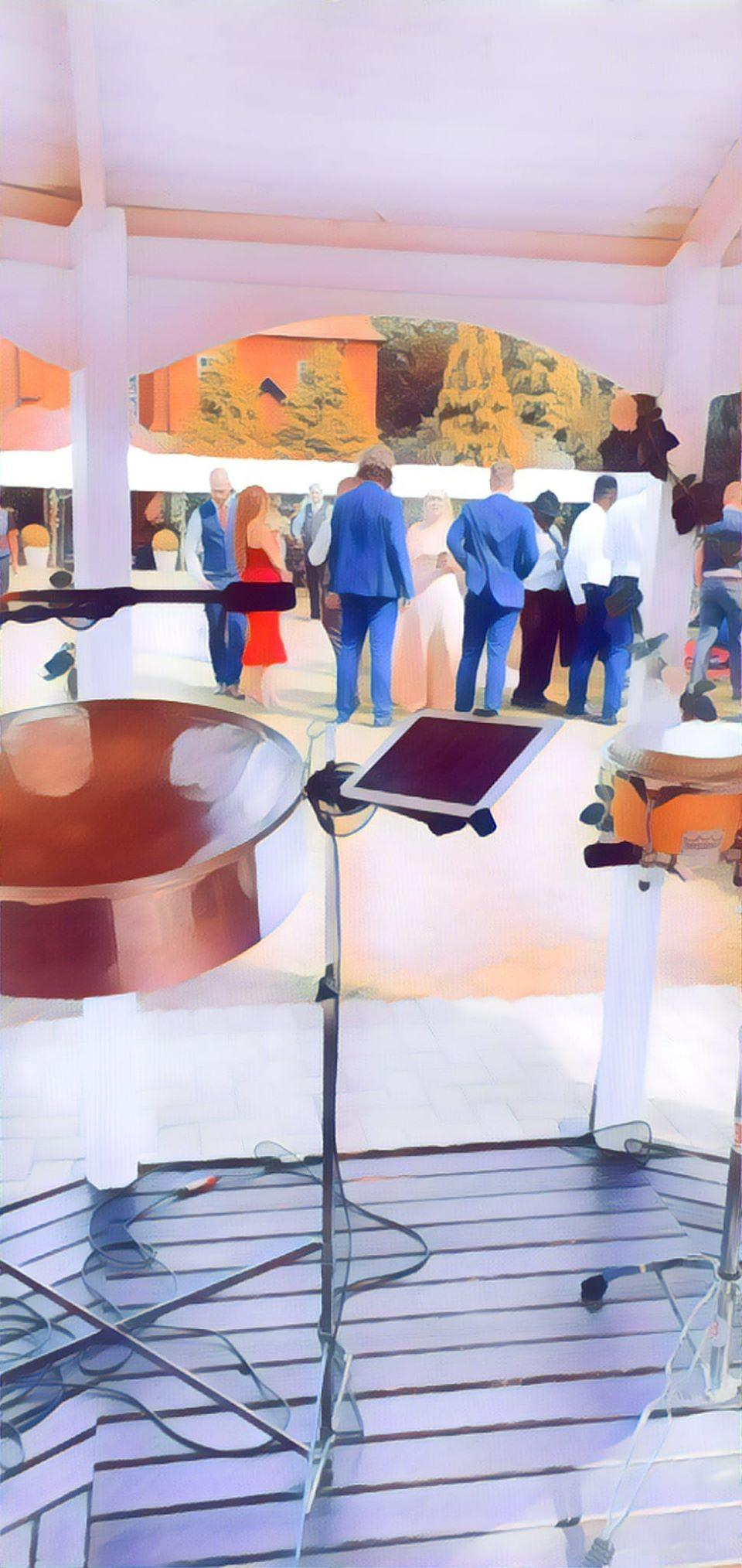 party ideas steelband hire