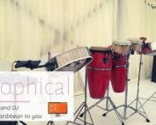 1Steelasophical wedding band steelpan