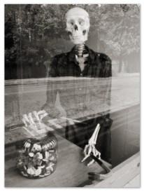 Skeleton. Sheffield S7