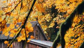 aged wooden house in autumn countryside