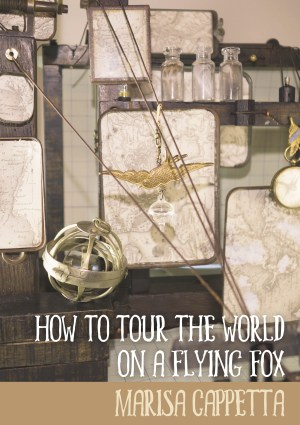 How to Tour the World cover