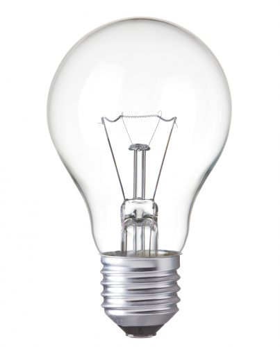Bulbs-Main-Image
