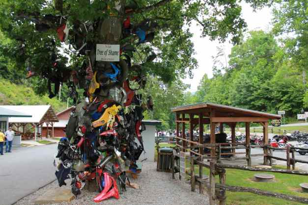 The Tree of Shame, Deal's Gap, NC