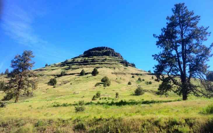 Green hillside