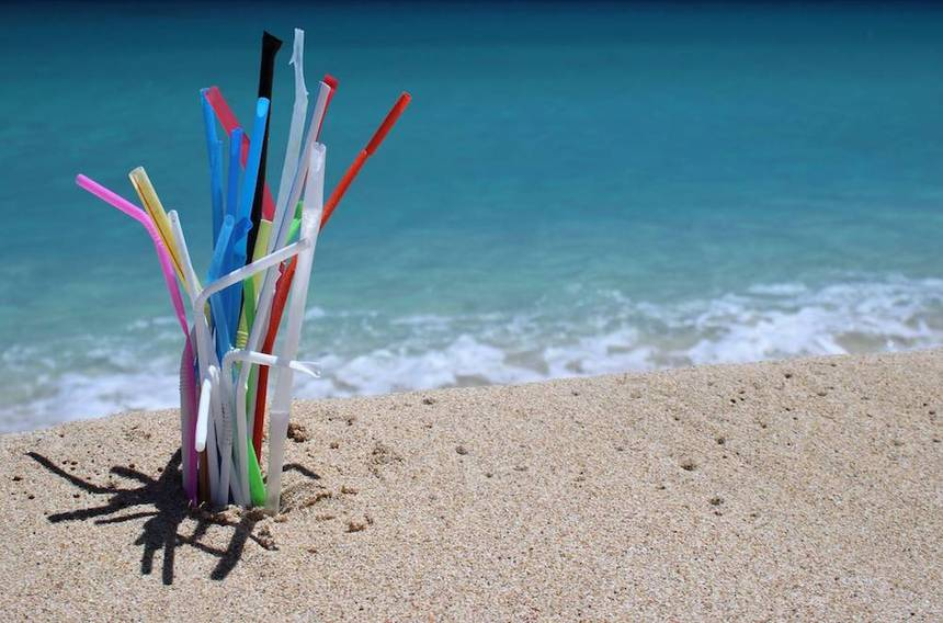 Plastic Straws – Dangerous To The Ocean, Unnecessary For Us!