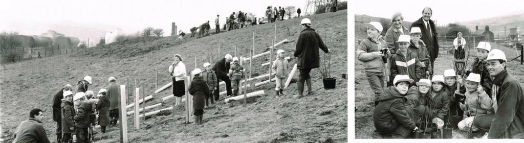 Tree Planting 1988