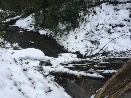 Leaky Dam3