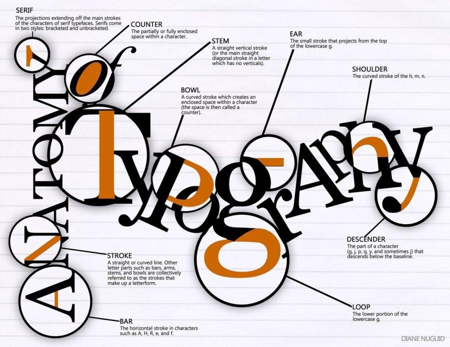 anatomy-of-typography_52335b171ee8e.jpg