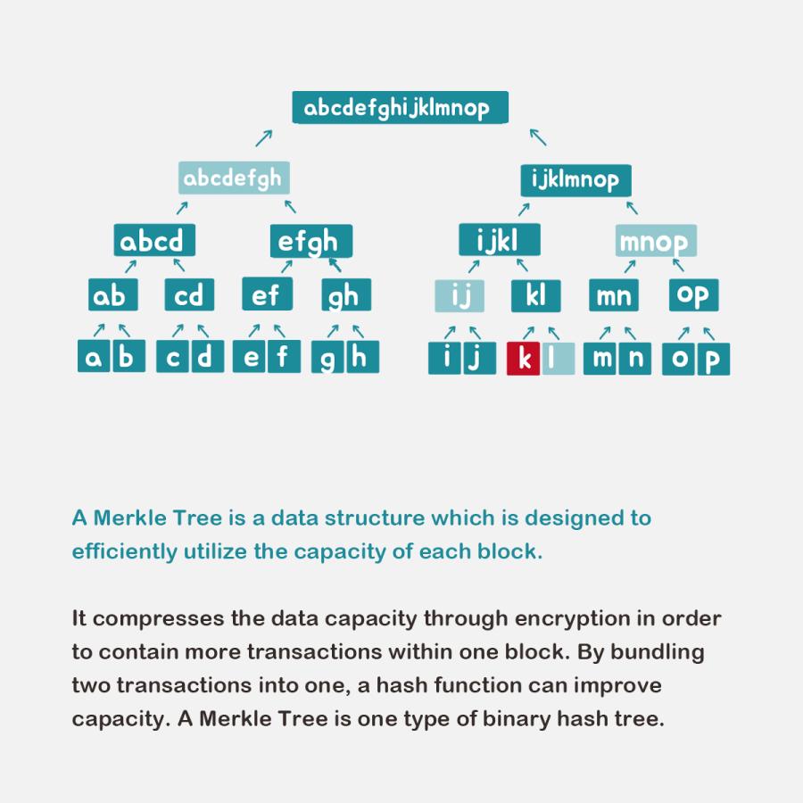 Encyclopedia - Merkle Tree Slide.png