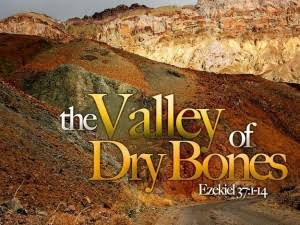Image result for WHAT IS THE MEANING OF THE VALLEY OF DRY BONES