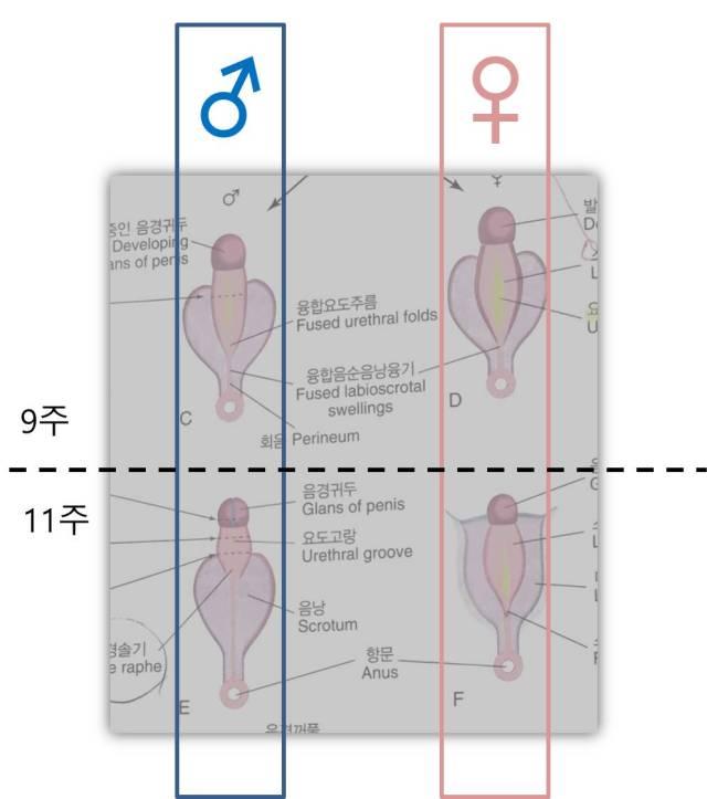 그림2.jpg