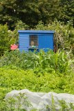 Allotment 3rd july 2014 lores-9353