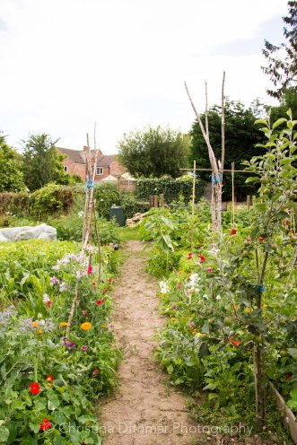 Allotment 3rd july 2014 lores-9388