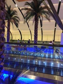 Der Flughafenbereich, mit Palmen gestaltet