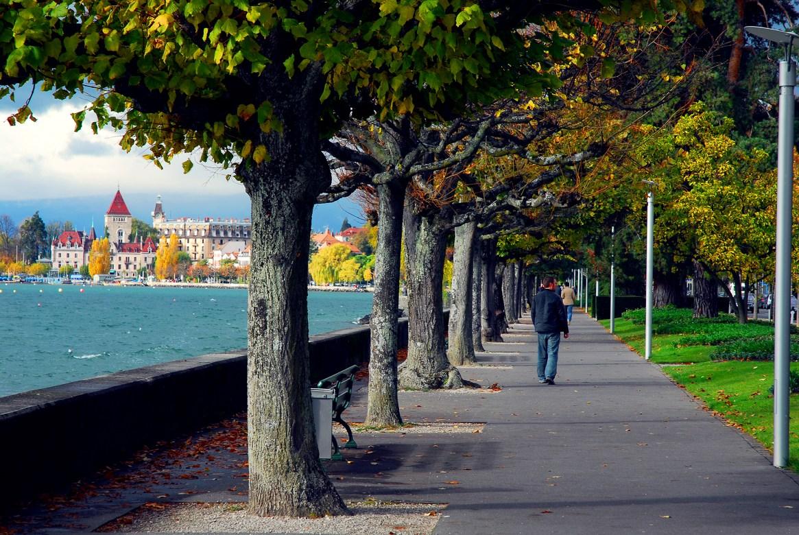 Tree-lined avenue alongside Lac Leman, Lausanne, Switerzland