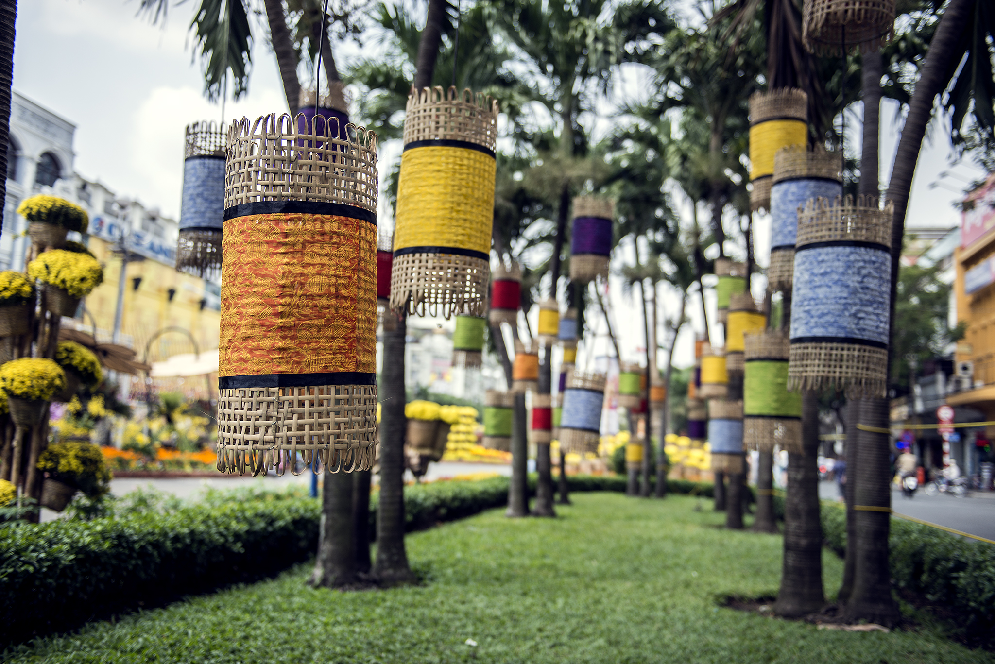 Yellow, orange and blue lanterns hanging from palm trees
